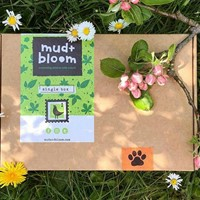 Mud & Bloom Box